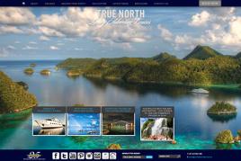 Tour & Travel Agent Websites