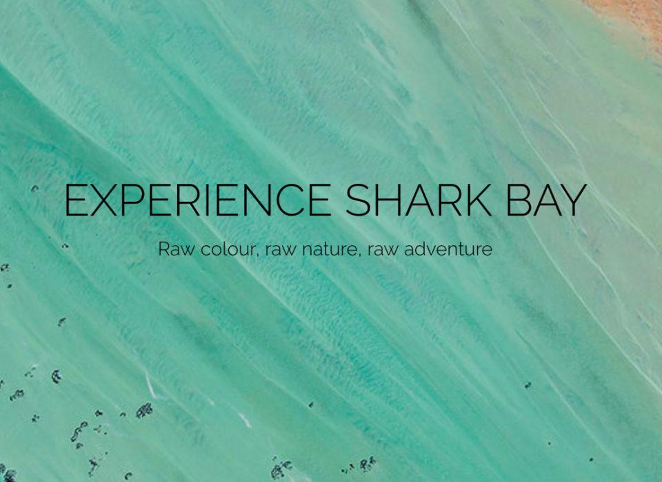 shark-bay-feature