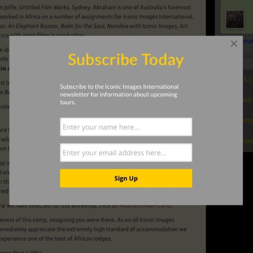 Email Pop Up Subscription Form