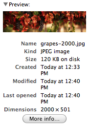 grapes-file-information