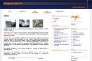 NewGenCo - Global Nickel Mining Alliances